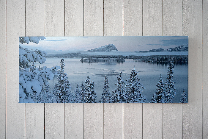 Canvas201501320