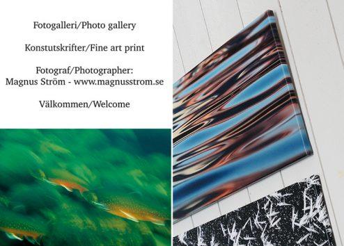 Fotokonstgalleriet-494x354.jpg